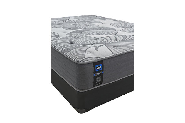Sealy Euclid Avenue Ultra Firm Foam Full Mattress, Gray, large