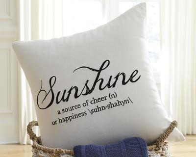 Ashley Sunshine Pillow, White