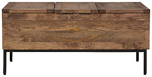 Braddick Storage Trunk, , large