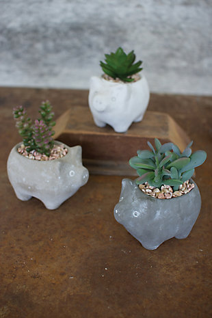 Artificial Succulents In Cement Pig Planters (Set of 3), , large