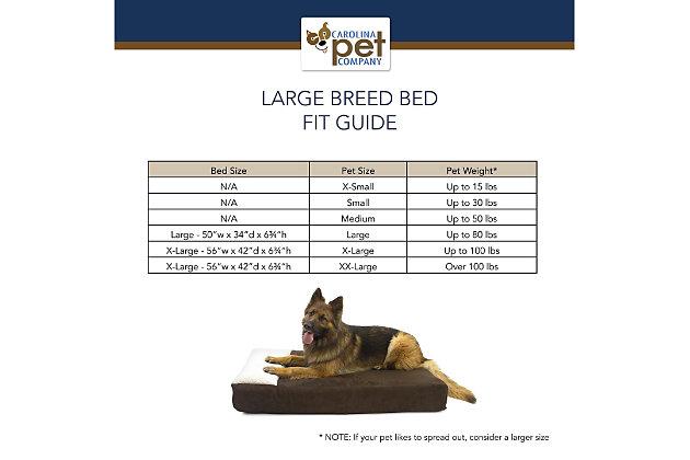 Lounger Large Pet Bed, Sage, large