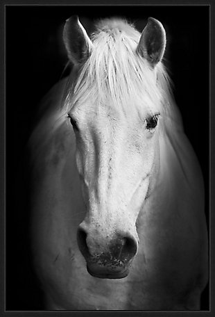 Giclee Horse Wall Art, , large