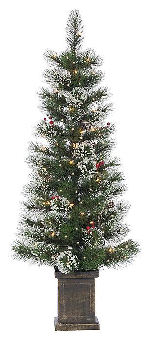 Decorative 4' Potted Mixed Needle Loveland Spruce Tree, , large