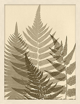 Giclee Sepia Ferns Wall Art, , large