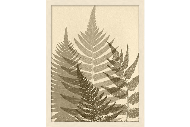Giclee Sepia Ferns Wall Art, , large