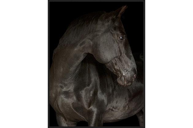 Giclee Black Stallion Wall Art, , large