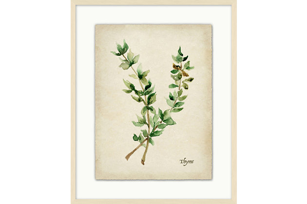 Giclee Kitchen Herb Wall Art, , large
