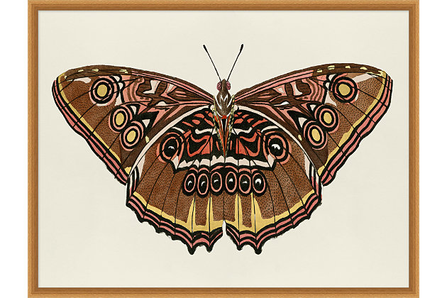 Giclee Butterfly Wall Art, , large