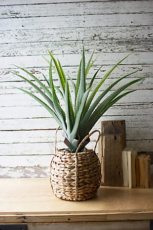 Home Accent Artificial Aloe Plant, , large