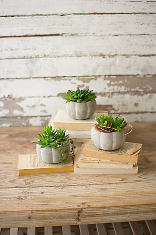 Home Accent Artificial Succulents (Set of 3), , rollover