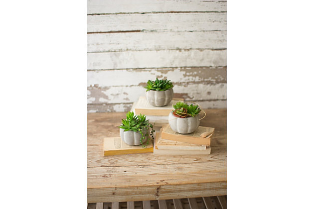 Home Accent Artificial Succulents (Set of 3), , large