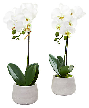 Home Accent Phalaenopsis Orchid Artificial Arrangement (Set of 2), , large