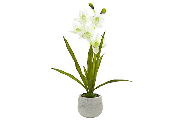 Home Accent Cymbidium Orchid Artificial Arrangement in Vase, , large