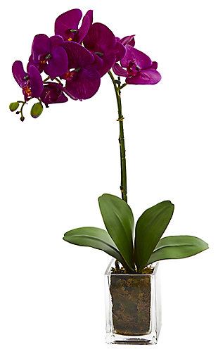 "Home Accent 24"" Orchid Phalaenopsis Artificial Arrangement in Vase, , large"