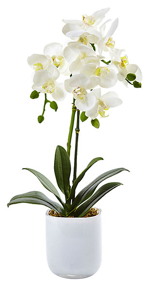 Home Accent Phalaenopsis in Frosted Glass, , large