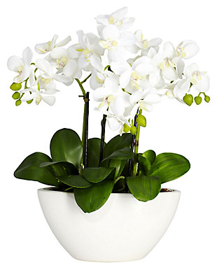 Home Accent Phalaenopsis Silk Flower Arrangement, , rollover
