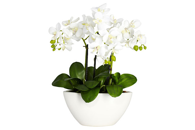 Home Accent Phalaenopsis Silk Flower Arrangement, , large