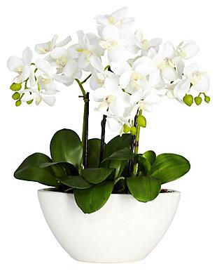 Home Accent Phalaenopsis Silk Flower Arrangement, , large