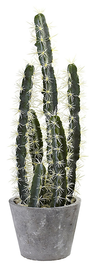 Home Accent Decorative Cactus Garden with Cement Planter, , large