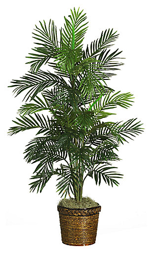 "Home Accent 56"" Areca Tree with Basket, , large"