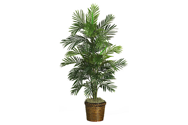 """Home Accent 56"""" Areca Tree with Basket, , large"""