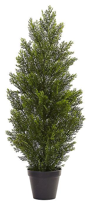 Home Accent 3' Mini Cedar Pine Tree (Indoor/Outdoor), , large