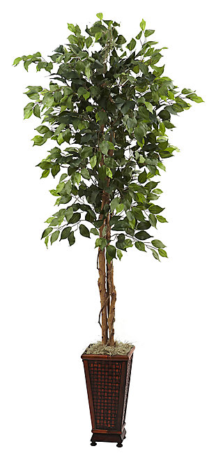 Home Accent 6.5' Ficus with Decorative Planter, , large