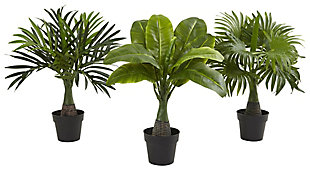 Home Accent Areca, Fountain & Banana Palm (Set of 3), , rollover