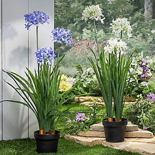 Decorative Assorted Artificial Agapanthus In Pot (set Of 2), , rollover
