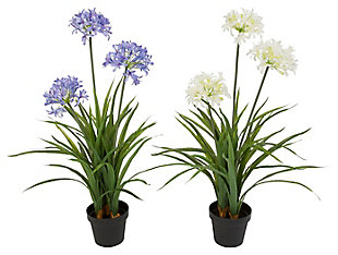 Decorative Assorted Artificial Agapanthus In Pot (set Of 2), , large