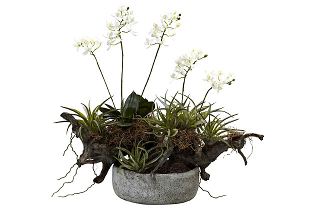 Home Accents Orchid and Succulent Garden with Driftwood and Decorative Vase, , large