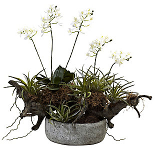 Home Accents Orchid and Succulent Garden with Driftwood and Decorative Vase, , rollover