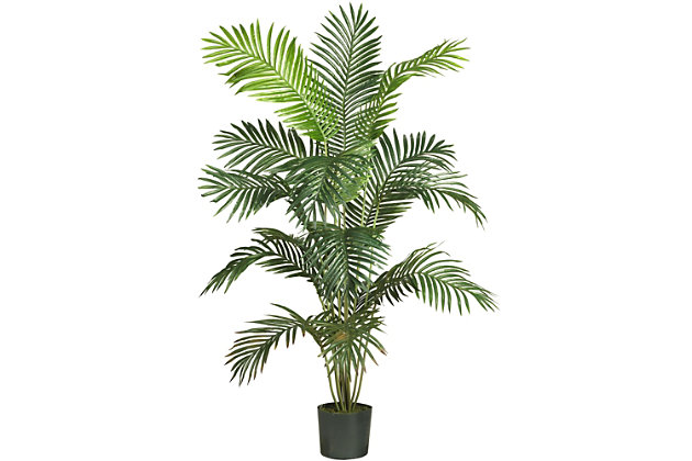 Home Accents 6' Paradise Palm, , large