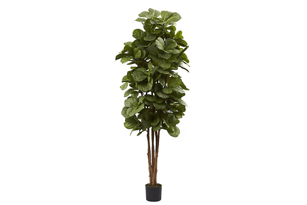 Home Accents 6' Fiddle Leaf Fig Silk Tree, , large