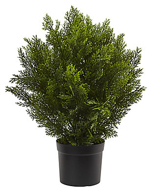 Home Accents 2' Cedar Bush (Indoor/Outdoor), , large