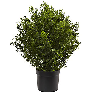 Home Accents 2' Cedar Bush (Indoor/Outdoor), , rollover