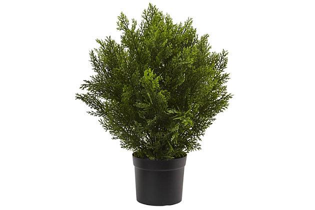 Home Accents 2' Cedar Bush (Indoor/Outdoor), , large