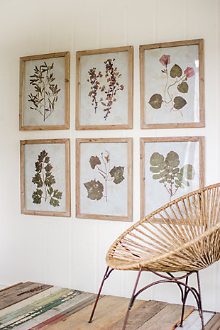 Leaf Prints Under Glass Wall Art (Set of 6), , large