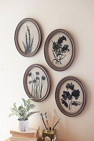 Oval Botanical Prints Under Glass Wall Art (Set of 6), , large