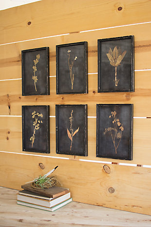 Botanical Prints Under Glass (Set of 6), , large
