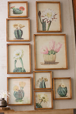 Cactus Flower Wall Art Prints Under Glass (Set of 9), , rollover