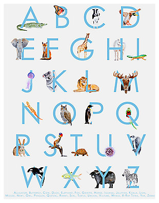 Oopsy Daisy Animal Kingdom ABC's - Blue by Brett Blumenthal Posters That Stick, Blue, large