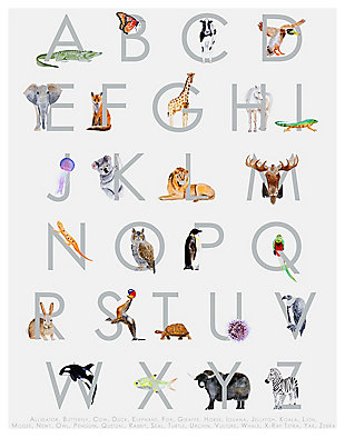 Oopsy Daisy Animal Kingdom ABC's - Gray by Brett Blumenthal Posters That Stick, Gray, rollover