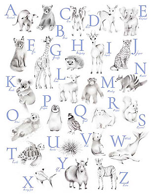 Oopsy Daisy Baby Animal Alphabet - Cadet by Nicky Quartermaine Scott Canvas Wall Art, , large