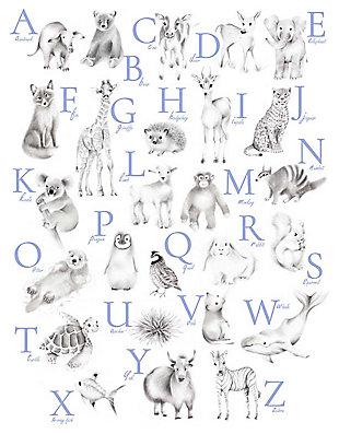 Oopsy Daisy Baby Animal Alphabet - Cadet by Nicky Quartermaine Scott Canvas Wall Art, , large