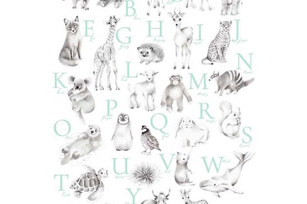 Oopsy Daisy Baby Animal Alphabet - Mint by Nicky Quartermaine Scott Canvas Wall Art, , large