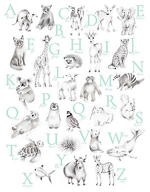 Oopsy Daisy Baby Animal Alphabet - Mint by Nicky Quartermaine Scott Canvas Wall Art, , large