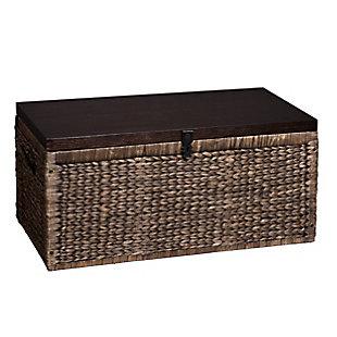 Carley Hyacinth Storage Trunk - Blackwashed with Espresso, , large