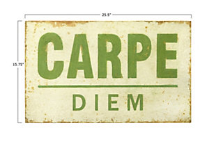 "Creative Co-Op 25.5""W Distressed ""Carpe Diem"" Wood Wall Decor, , large"