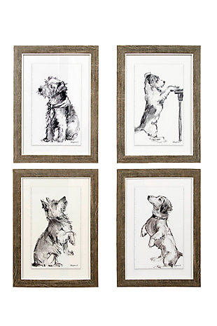 Framed Prints of Charcoal Dog Drawings Wall Art (Set of 4 Images), , large
